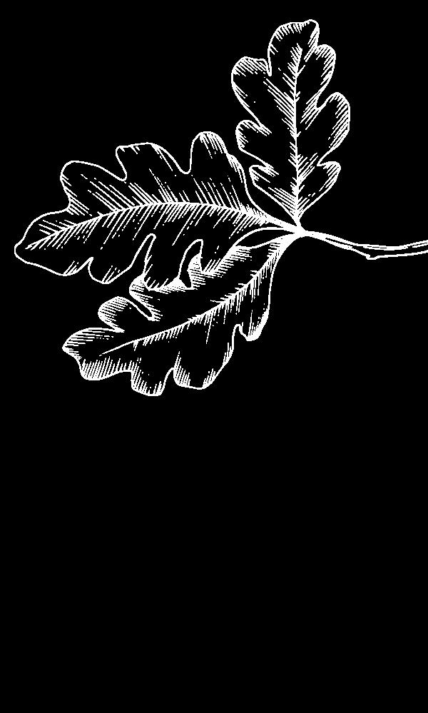 Passions, passions, Arbres, arbres, Jardins, jardins, Travaux , travaux, Élagage, élagage, espaces verts, Espaces verts, taille, Taille, nature, Nature, particuliers, Particuliers, professionnelles, Professionnelles, ain, Ain, Beaujolais, beaujolais, maconnais, Maconnais, Création, création, Entretien, entretiens, Parc, parc, Paysagiste, paysagiste, Abattage, abattage, Taille, taille